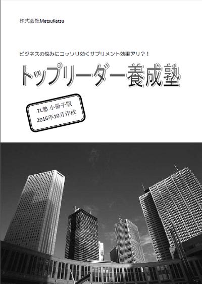 【MK10】2016年の最後のご挨拶(幻の小冊子プレゼントあり!)